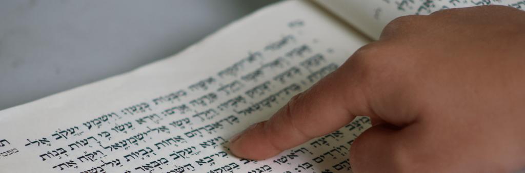 Torah Learning